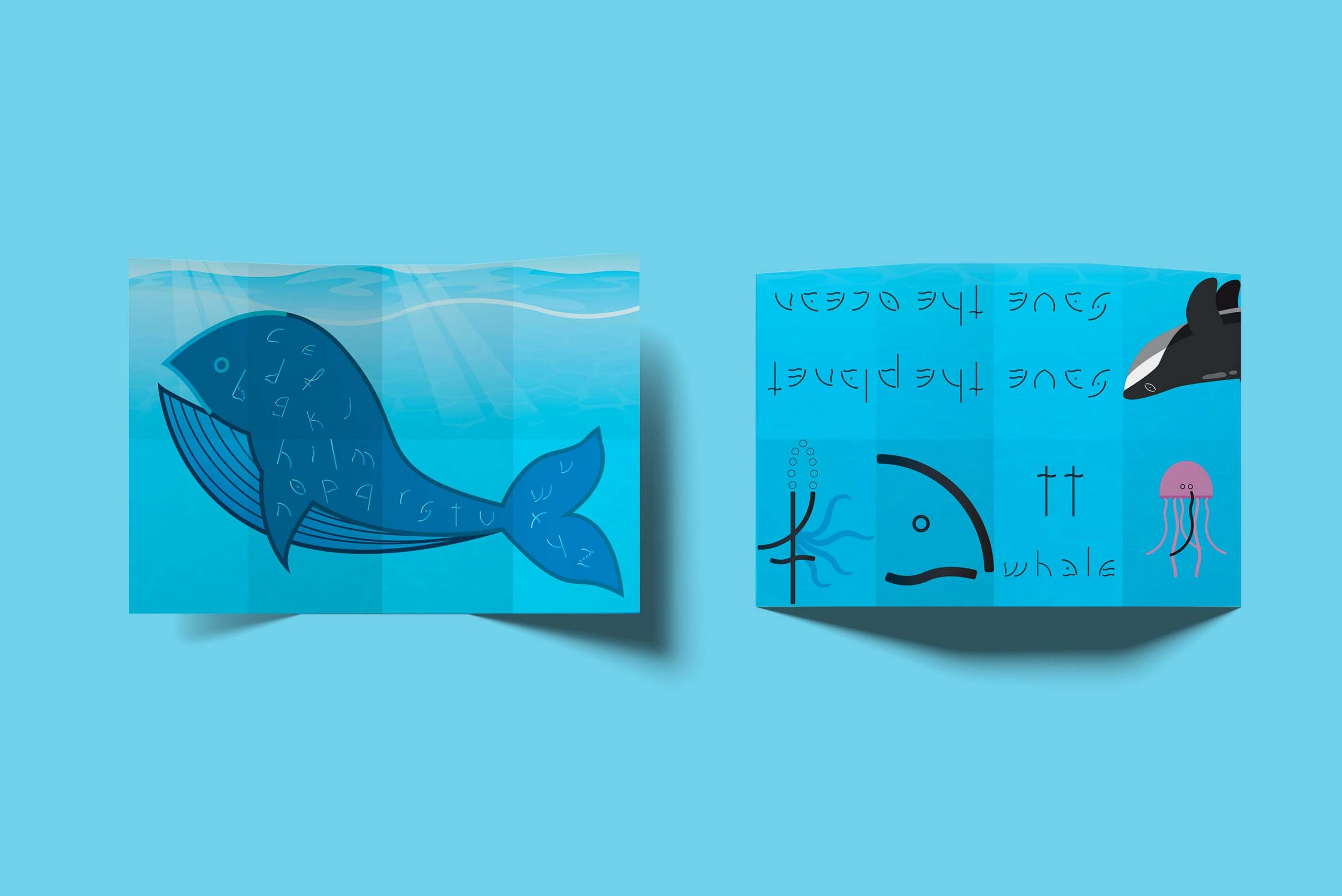 tt whale copertina